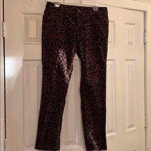 Ann Taylor LOFT velvet pants